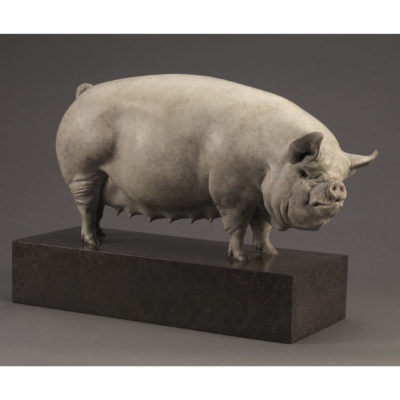 MIDDLE WHITE PIG (ALICE)