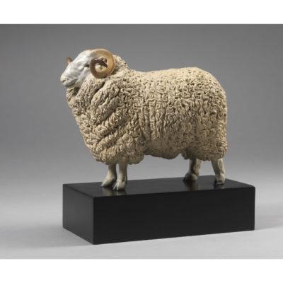 WHITEFACE DARTMOOR SHEEP (WILLIAM)