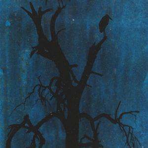 Balancing Marabou in Blue