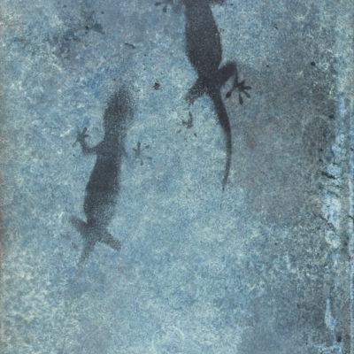 Gecko Photine