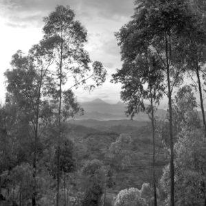 Road to Kagali
